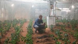 火星で家庭菜園